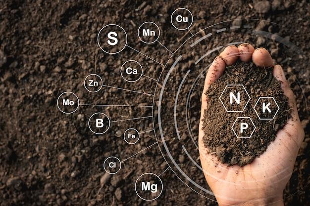 Leemachtige grond die rijk is aan mensenhanden en iconische technologie heeft over bodemvoedingsstoffen die essentieel zijn voor de teelt.