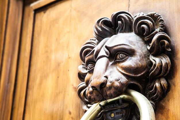 Leeuwenkopklopper op een oude houten deur in toscane - italië