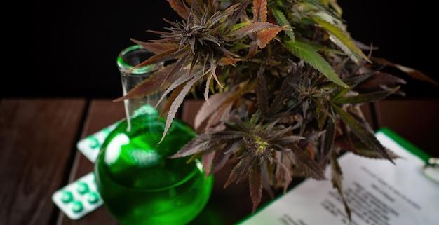 Legaal onderzoek naar en gebruik van cannabisplanten voor medische doeleinden voor de behandeling van ziekten