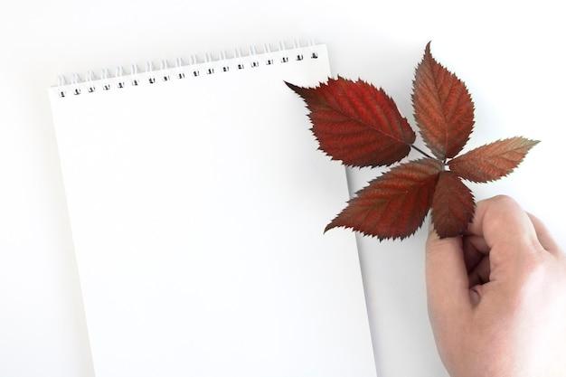 Lege blocnote met herfstbladeren