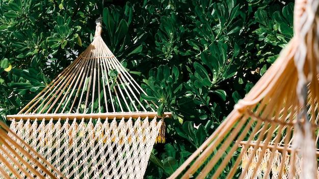 Lege hangmat bij een boom