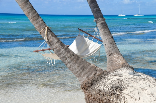 Lege hangmat tussen palmbomen bij zandstrand.