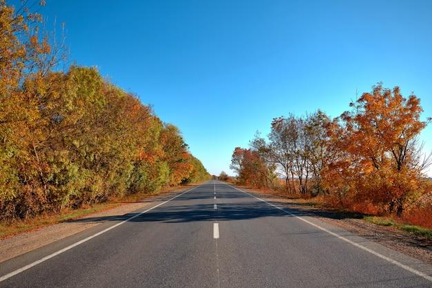 Lege herfstweg, snelweg, met prachtige bomen aan de zijkanten, tegen de achtergrond van een heldere, blauwe lucht, zonder wolken