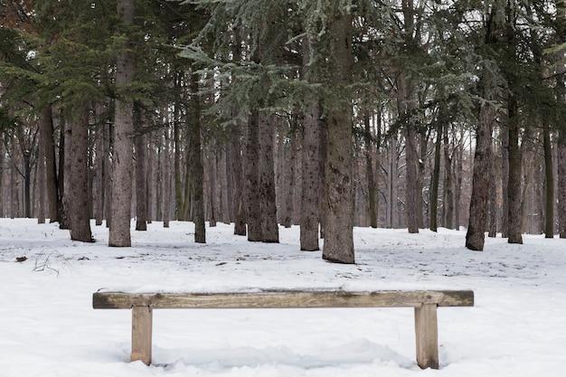 Lege houten bank die met sneeuw in de winterbos wordt behandeld