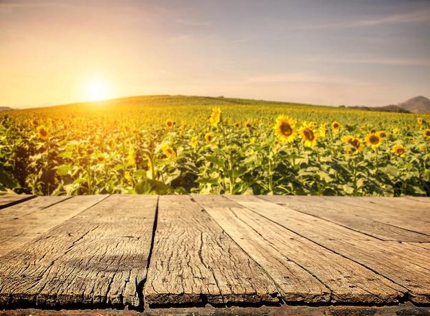 Lege houten plank met zonnebloem veld