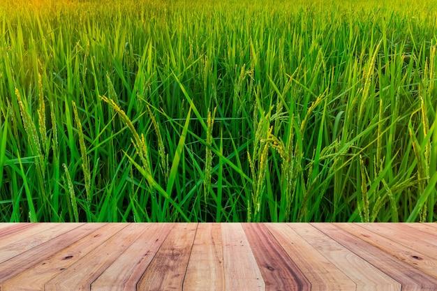 Lege houten tafel op rijstvelden