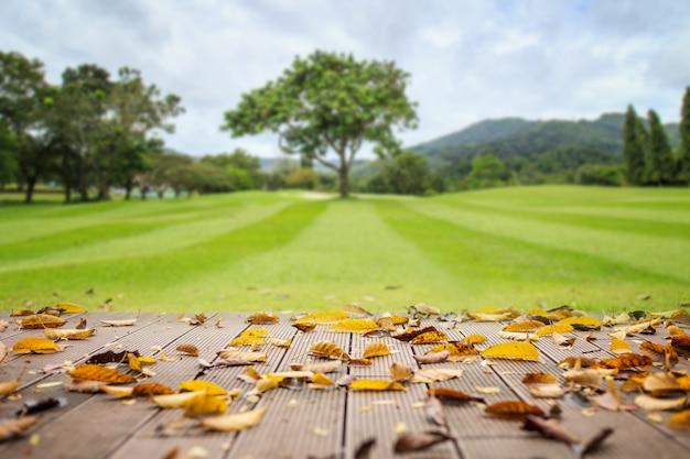 Lege houten vloer in de natuur