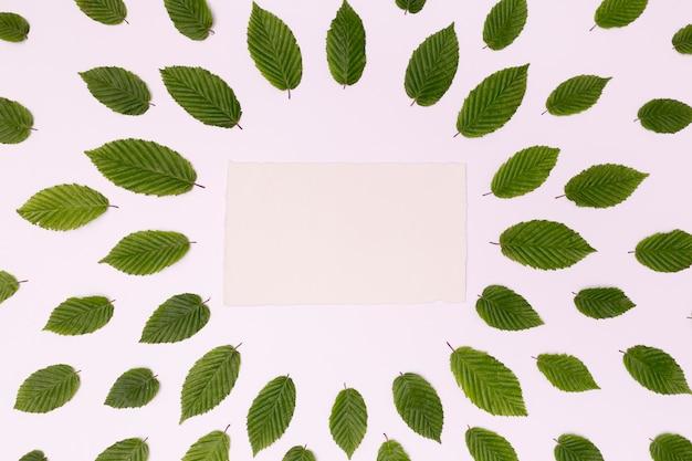 Lege kaart omgeven door regeling van bladeren