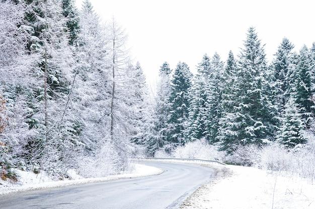 Lege landweg in de winter