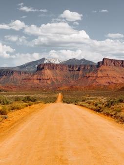 Lege onverharde weg in het midden van droge struiken richting de woestijn