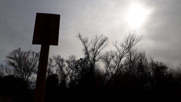 Lege poster om tekst in een donkere omgeving met silhouetten van bomen op de achtergrond op te nemen