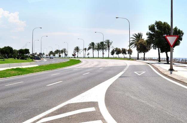 Lege snelweg dicht bij de kust met rij palmbomen in zomerdag