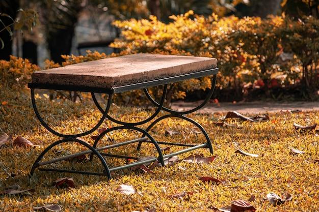 Lege stoel in het park op zonnige dag