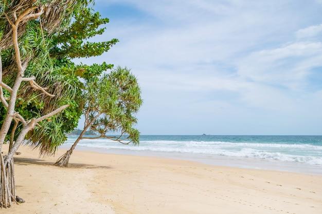 Lege tropische zomer strand achtergrond groene bomen laat frame met blauwe lucht en wit zandstrand golf crasht op zandige kust geweldig strand van phuket thailand.