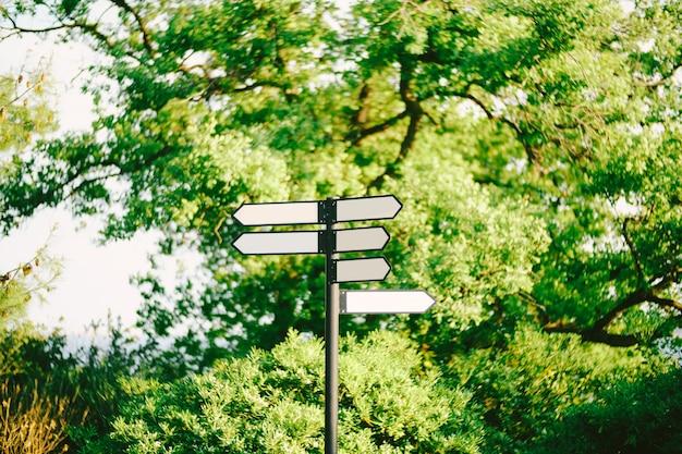 Lege verkeersborden in het bos tegen groene bomen