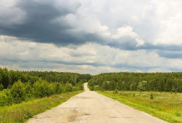 Lege weg door de bossen en ravijnen bij bewolkt weer