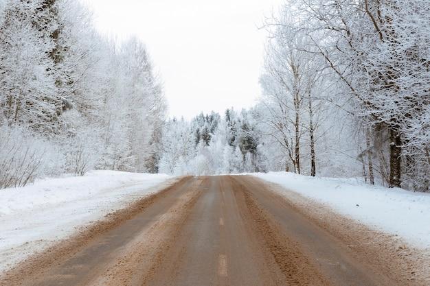Lege weg door schilderachtig winterbos