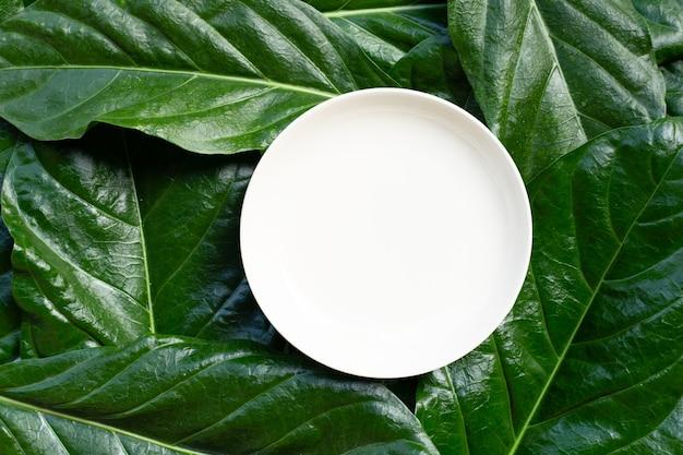 Lege witte ceramische plaat op bladeren van noni of morinda citrifolia