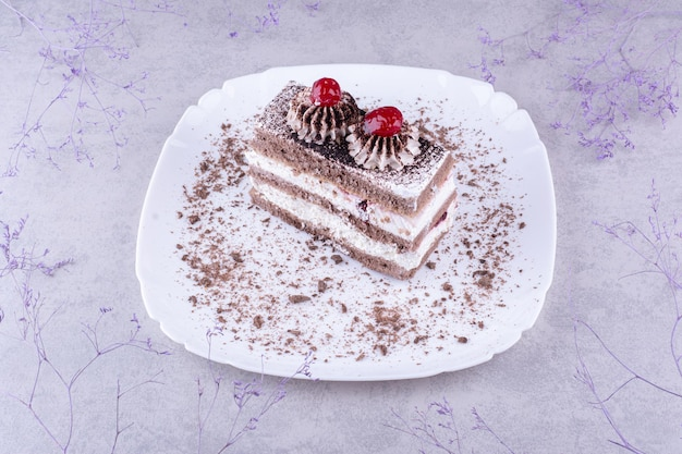 Lekkere chocoladetaart op witte plaat. hoge kwaliteit foto