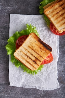 Lekkere traditionele vegetarische sandwich met tomaten en kaas op een grijze stenen tafel verticaal