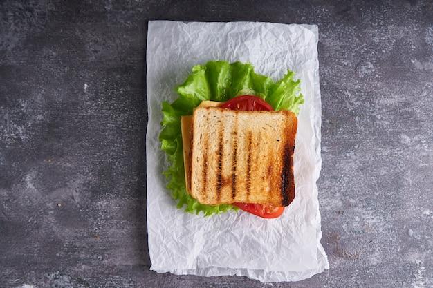 Lekkere traditionele vegetarische sandwich met tomaten en kaas op een grijze stenen tafel