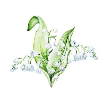 Lelietje-van-dalenbloemen. aquarel hand getekende illustratie.