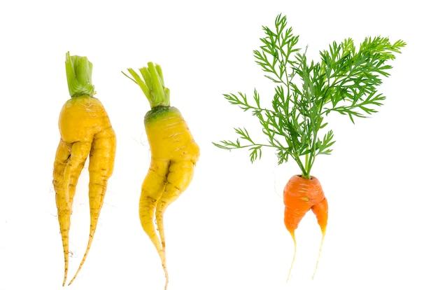 Lelijk gevormde groenten, eten