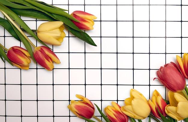 Lente bloemen achtergrond met kopie ruimte. plat lag frame gemaakt van tulpen bloesem bloemen met waterdruppels, bovenaanzicht, brede compositie.
