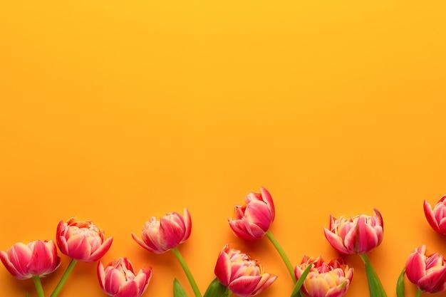 Lente bloemen tulpen op pastel kleuren achtergrond. retro vintage stijl.