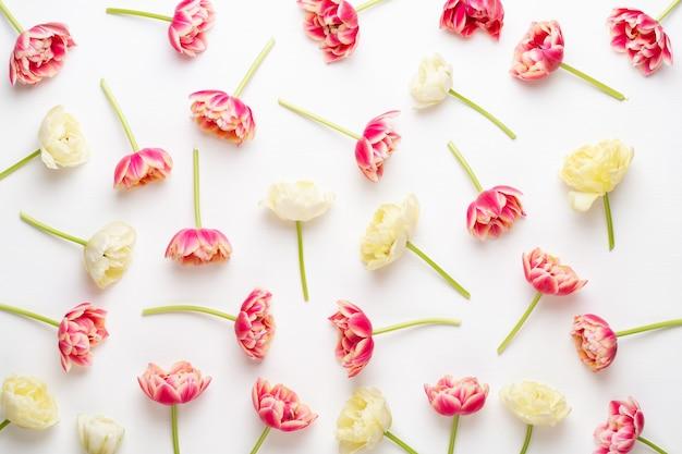 Lente bloemen. tulpen op pastelkleuren achtergrond. wenskaart retro vintage stijl.