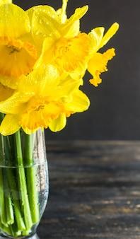 Lente concept met fel gele narcis bloemen