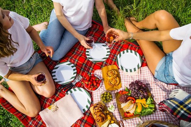 Lente en zomer vrije tijd in de natuur met heerlijk eten en wijn