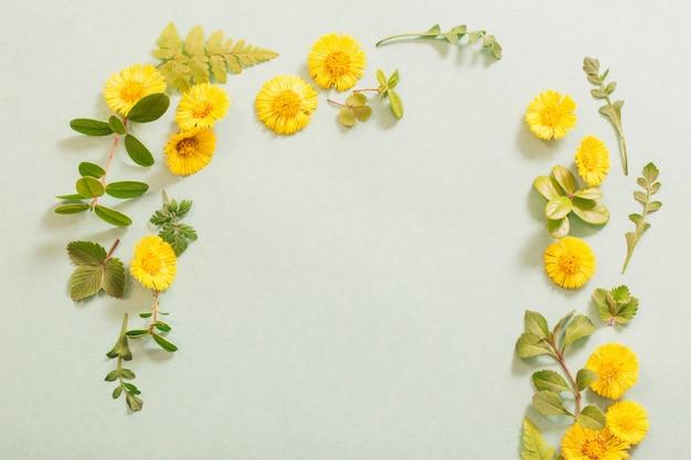Lente gele bloemen op papier achtergrond