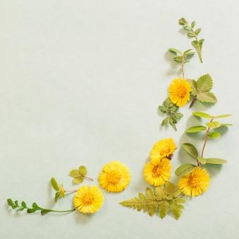 Lente gele bloemen op papier