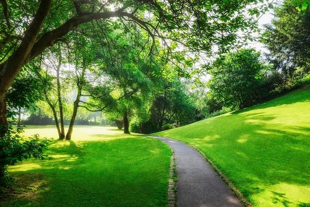 Lente groen park stadspark met pad vers gazon en bomen in de ochtend schoonheid in de natuur