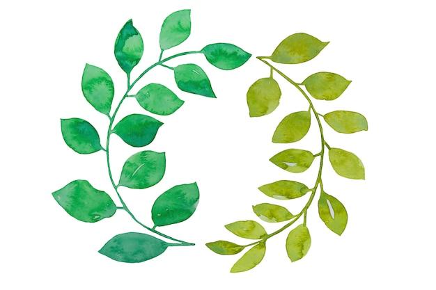Lente groene bladeren aquarel krans. hand getrokken pasen, geïsoleerde zomer groene bladeren.
