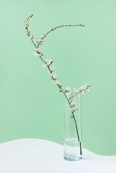 Lente groet briefkaart van verse tak van natuurlijke bloeiende kersenboom in een glas water