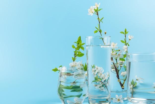 Lente kersenbloeiende bloemen vervormd door water in glazen op blauwe ondergrond