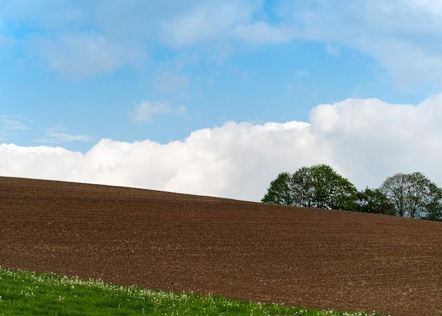 Lente landschap van een zwart landbouwgebied met bomen