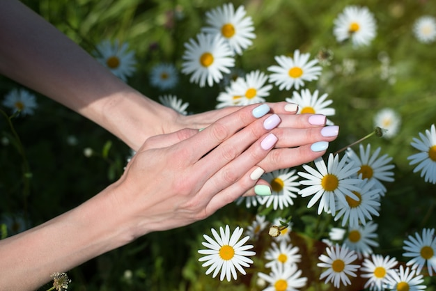 Lente manicure op korte nagels. vrouwelijke handen op een kamille. zorg voor handen.