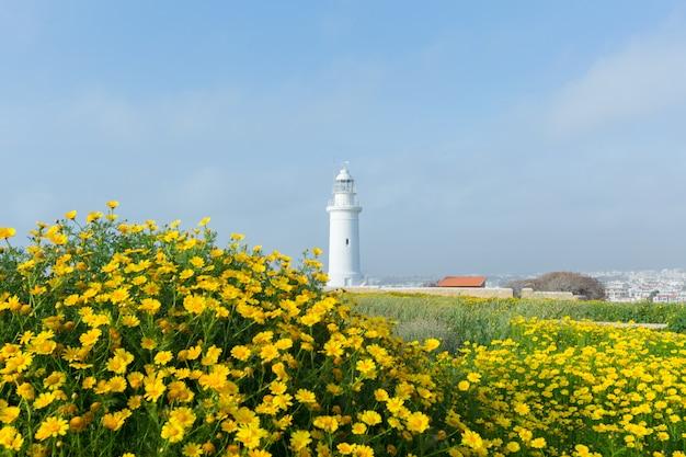 Lente met mooie gele bloemen