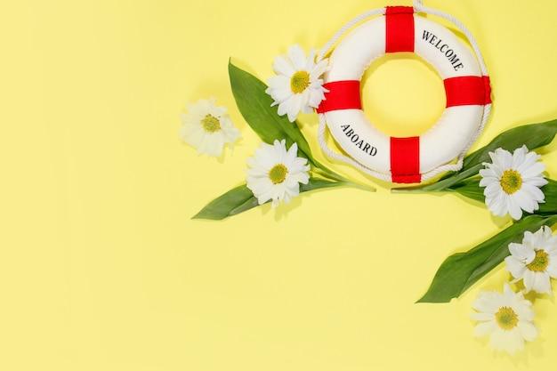 Lente of zomer achtergrond met kopie ruimte voor tekst kamilles en bloemblaadjes