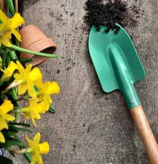 Lente tuinieren concept
