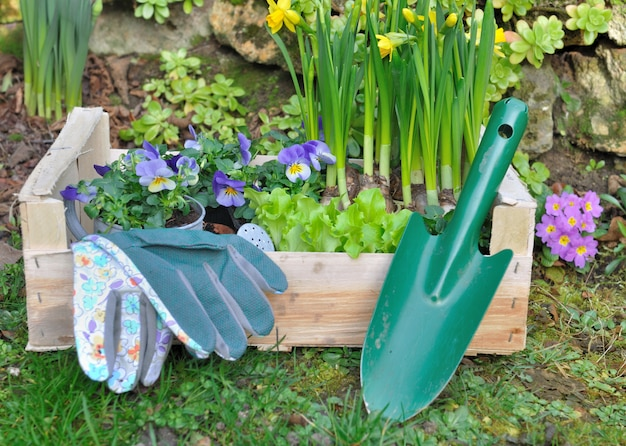 Lente tuinieren samenstelling