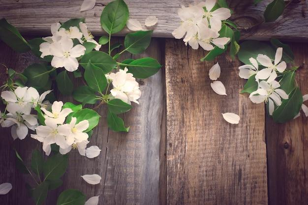 Lente vintage achtergrond met bloeiende takken van appel