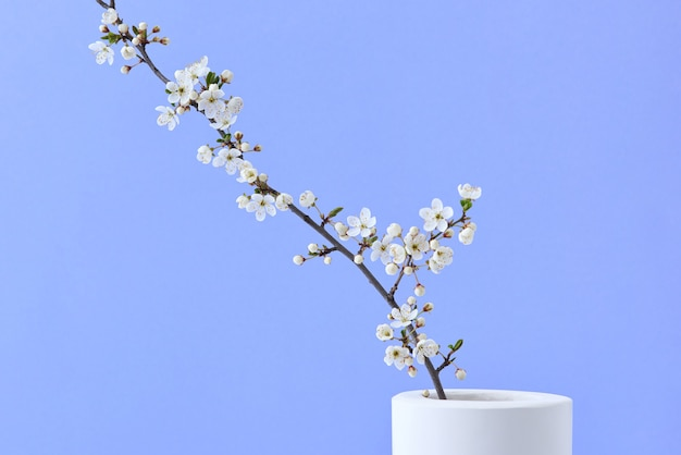 Lente wenskaart met natuurlijke verse bloeiende kersenbloemen tak in een keramische vaas