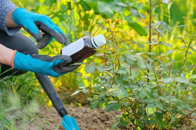 Lente werk in de tuin, fles kunstmest, fungicide in de hand van vrouw tuinman