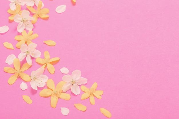 Lente witte en gele bloemen op roze papieren oppervlak