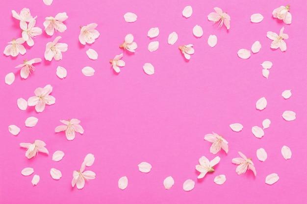 Lentebloemen op roze papieren oppervlak