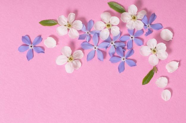 Lentebloemen op roze